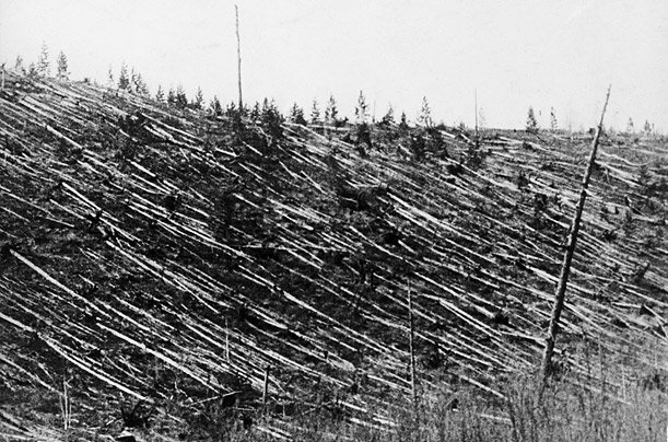 Massive deforestation after Tunguska eplosion.