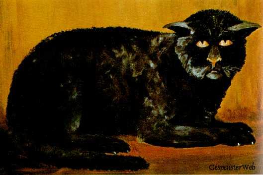 Black Cat Of Killakee