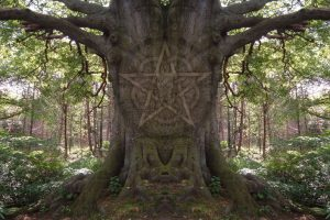magick-tree