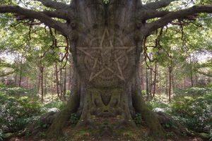magick-tree