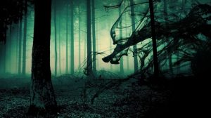 paranormal-forest