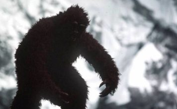 In North American folklore, Bigfoot or Sasquatch is a hairy, upright-walking, ape-like being who reportedly dwells in the wilderness and leaves behind footprints.