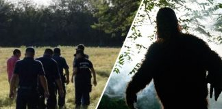 Bigfoot police