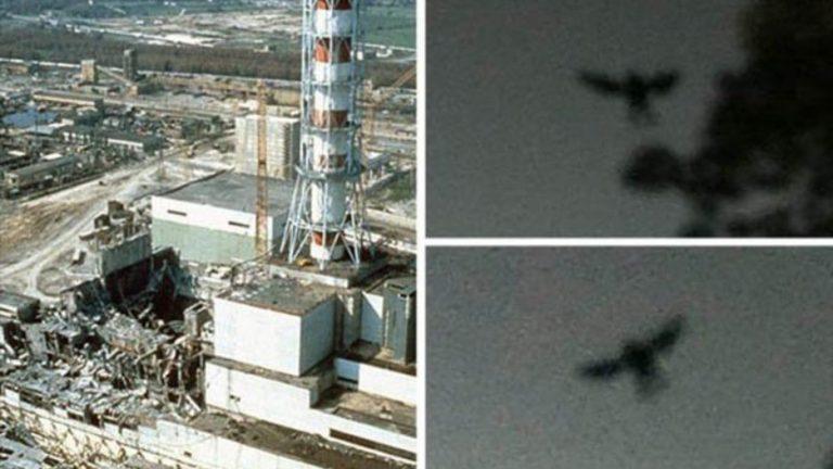 Chernobyl mothman
