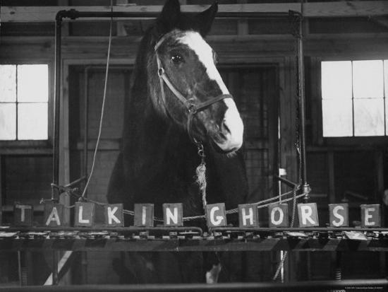 Telepath horse