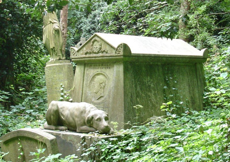 Dog lion tomb
