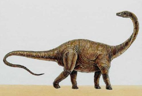 Mokele-Mbembe: Do Dinosaurs Still Live Among Us? | Anomalien com