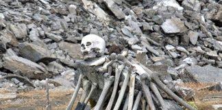 Lake skeleton