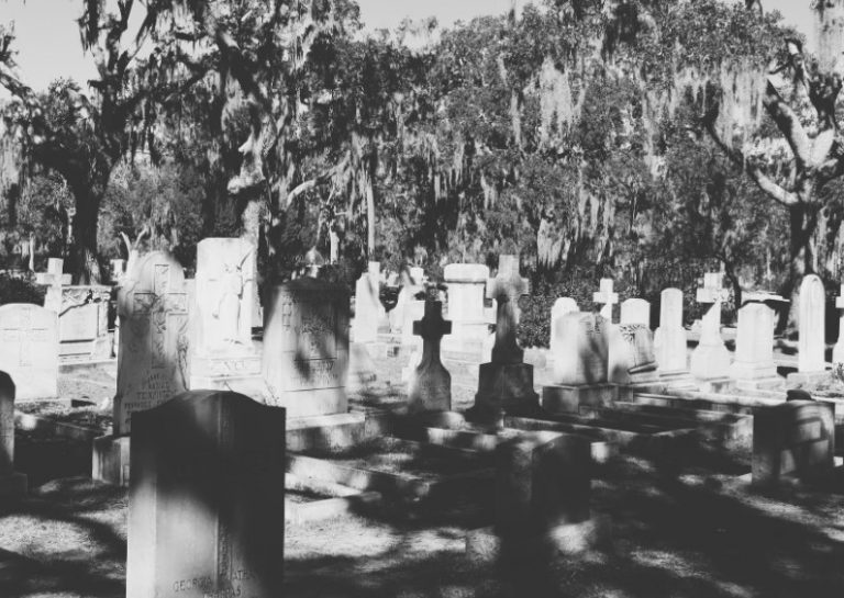 Savannah cemetery