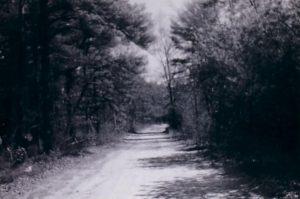 Swamp triangle