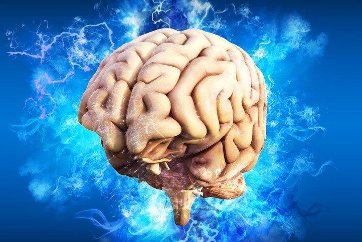brain blue