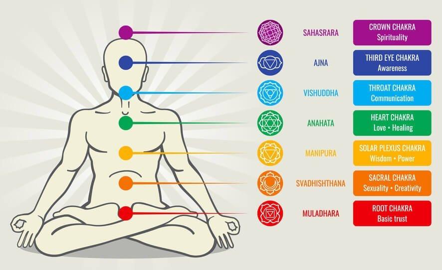 The Seven Major Chakras of the Human Body