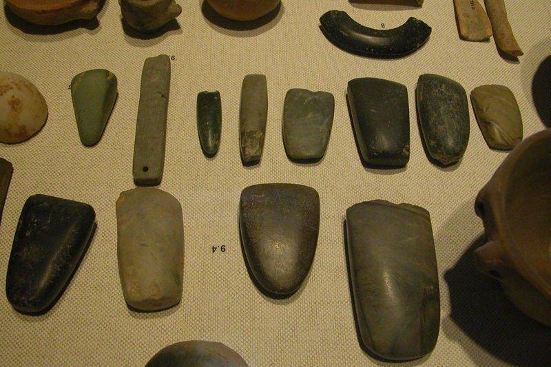 Stone tools from Pliocene Epoch