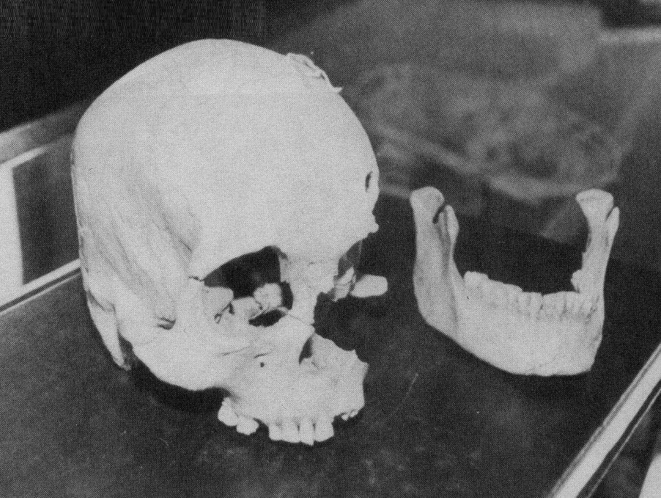 Lovelock Skull